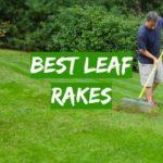Best Leaf Rakes