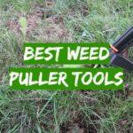 Best Weed Puller Tools