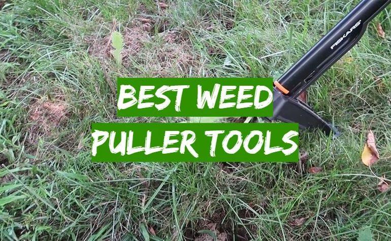 10 Best Weed Puller Tools