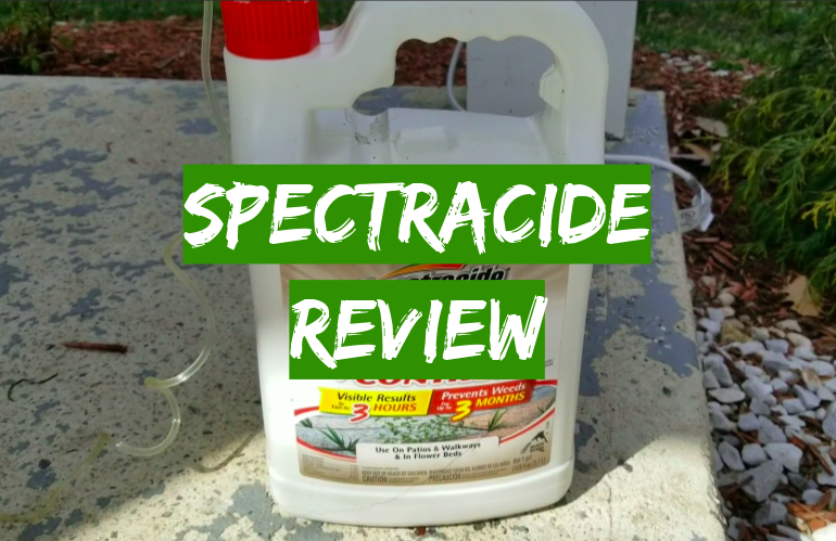 Spectracide Weed And Grass Killer Review