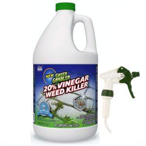 Green Gobbler Vinegar Weed & Grass Killer