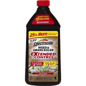 Spectracide Weed & Grass Killer With Extended Control Concentrate