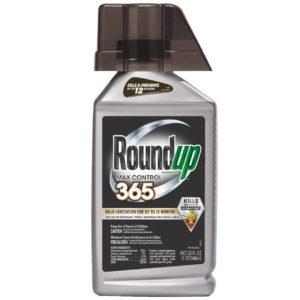 Roundup Concentrate Max Control 365 Vegetation Killer