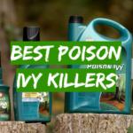Best Poison Ivy Killers