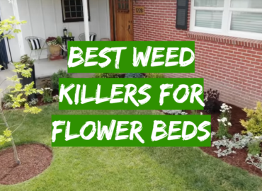 5 Best Weed Killers For Flower Beds