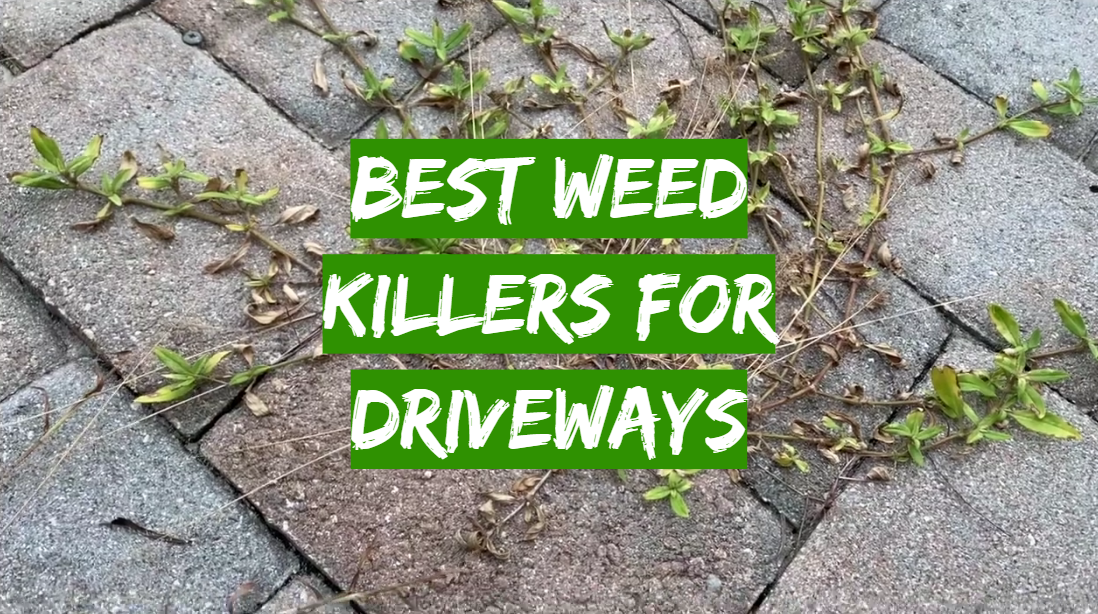 Best Weed Killers For Driveways