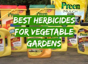 Best Herbicides for Vegetable Gardens