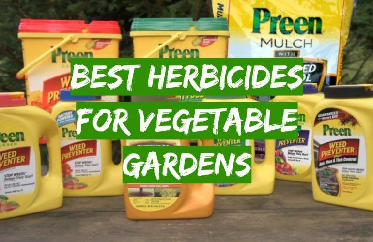 5 Best Herbicides for Vegetable Gardens