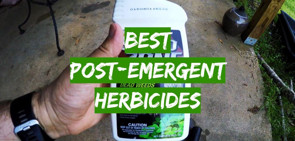 Best Post-Emergent Herbicides