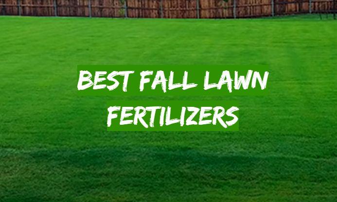 5 Best Lawn Fertilizers for Spring