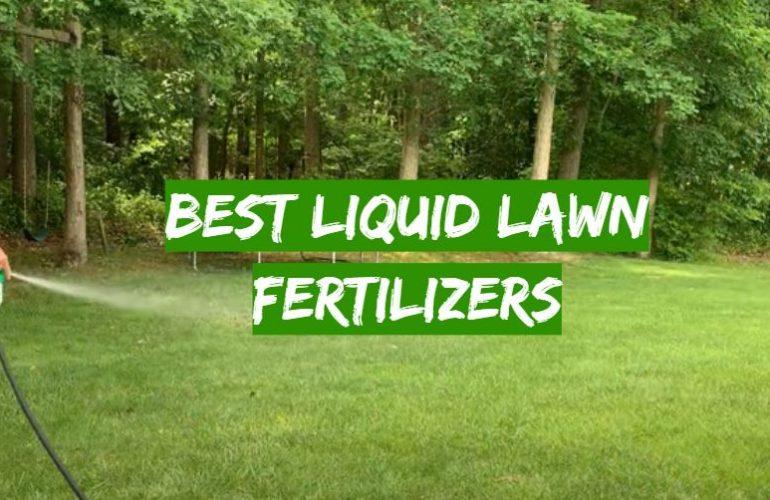 5 Best Liquid Lawn Fertilizers
