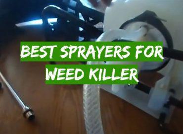 5 Best Sprayers for Weed Killer
