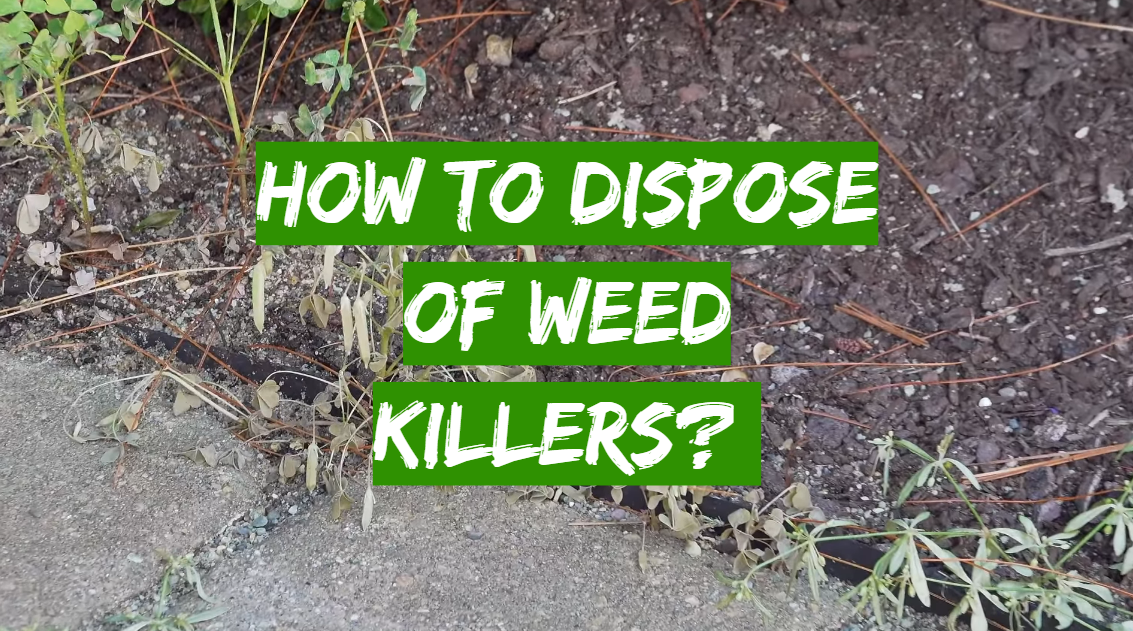 How to Dispose Of Weed Killers?